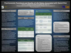 Psychosocial, Functional and Quality of Life Status Associated with Opioid Risk